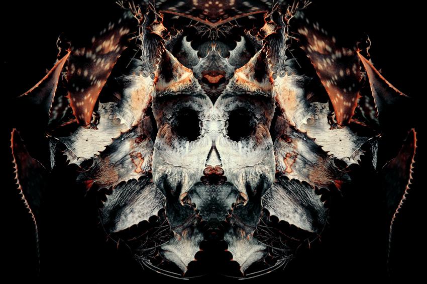 En un principio el casco, incluido entre los pertrechos militares, era un tocado protector hecho de materiales duraderos con el cuero, el metal o el cuerno. Surgido del espíritu del conflicto militar como guerra ritual o de inspiración divina, el casco se solía embellecer para expresar la posesión de temibles poderes mágicos, atributos animales o el patrocinio de alguna deidad en particular. En términos míticos, Hades, el Señor de los Muertos griego, es representado con un casco de invisibilidad que sugiere la presencia desapercibida de la muerte en la vida, de la que se suponía que protegía el casco del mortal. Se le asocia con los poderes místicos de la cabeza y representa un objeto codiciado, un contenedor de mana