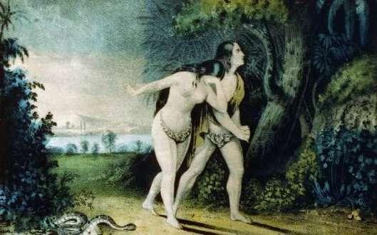 Adam y Javá