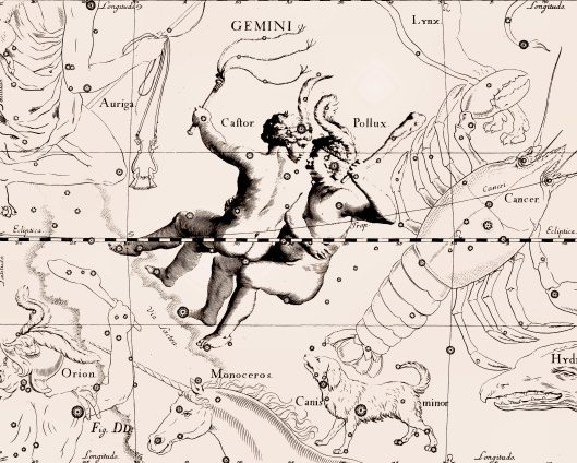Geminis, los gemelos