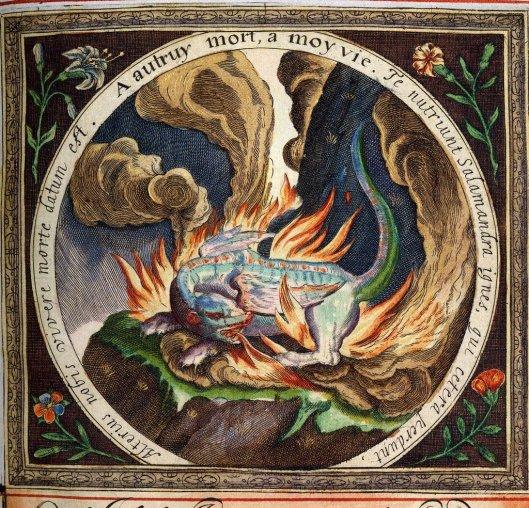 """Se convirtió en un símbolo del Fuego debido a que el animal secreta de su piel una sustancia que le hace resistente al fuego durante unos instantes. Es también el símbolo de la ablución filosófica. En la Atalanta Fugiens de Michael Maier se lee en el epigrama 29: """"Donde la salamandra vive más poderosa es en el fuego ardiente, no teme en nada las acechanzas de Vulcano. De igual modo la Piedra tampoco rechaza los crueles incendios de las llamas, pues nació en el fuego permanente. Aquella, que es fría, apaga y sale libre. Pero ésta es caliente, y el calor, su semejante, le ayuda."""""""